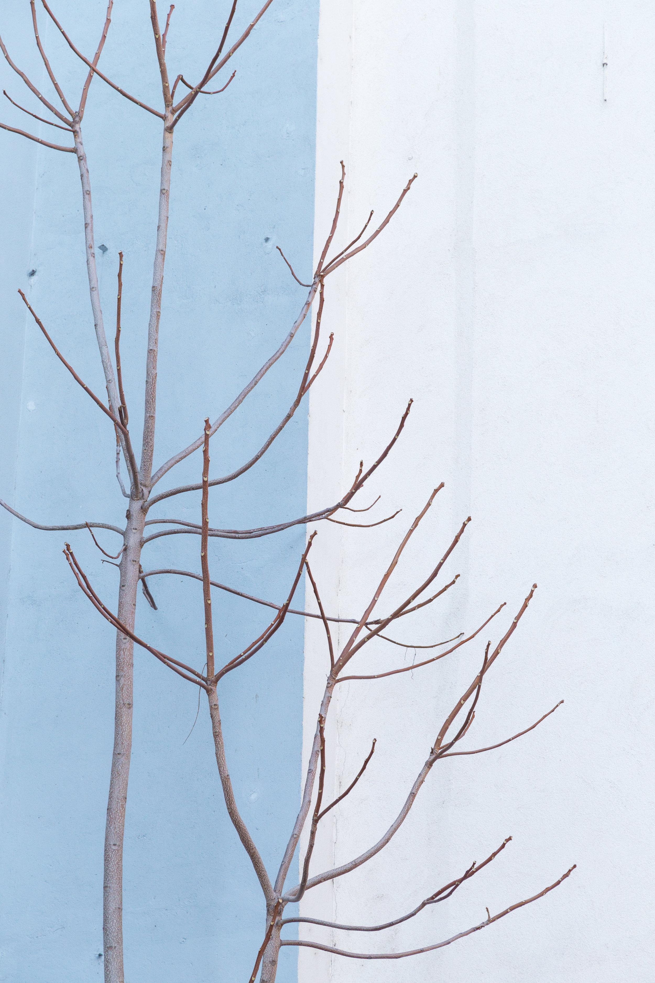 gregor-nobis-flaecheninhalt-1
