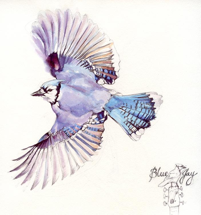 Illustration for Blue Jay Recording Studio