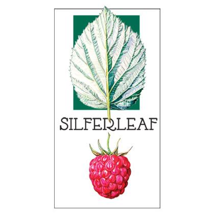 Silferleaf
