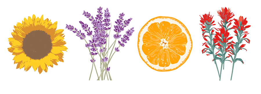 Ingredient illustrations for WOW sprays