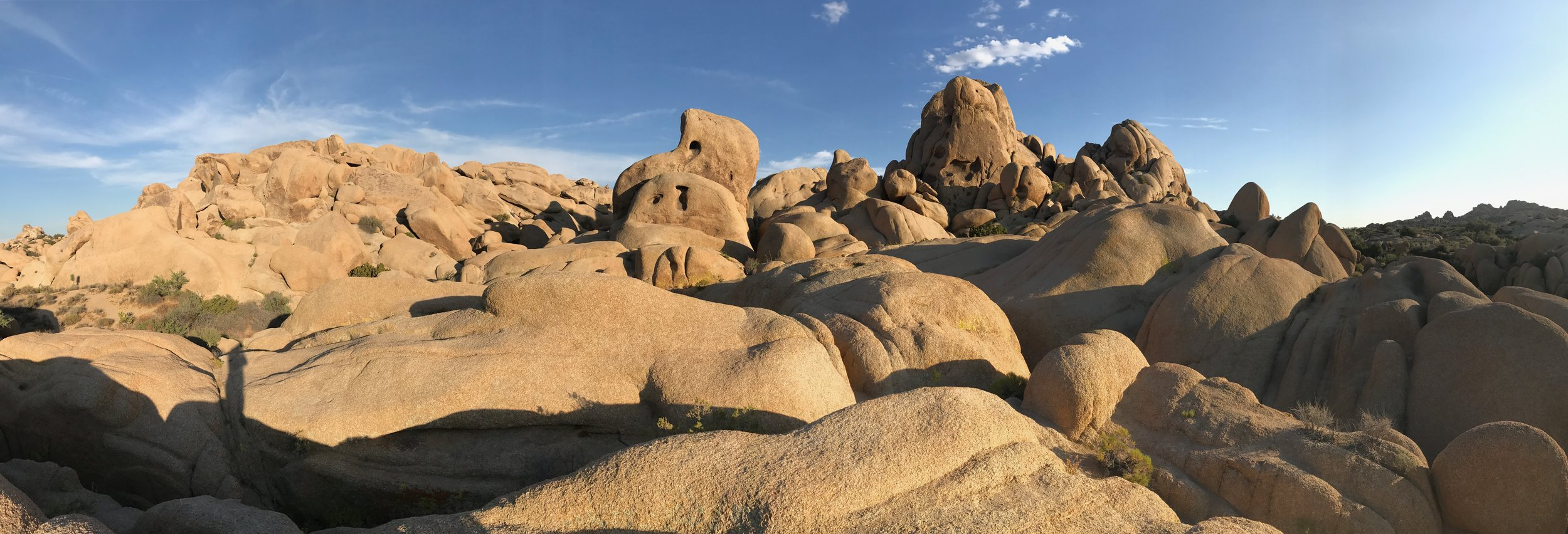 Joshua Tree Park, California