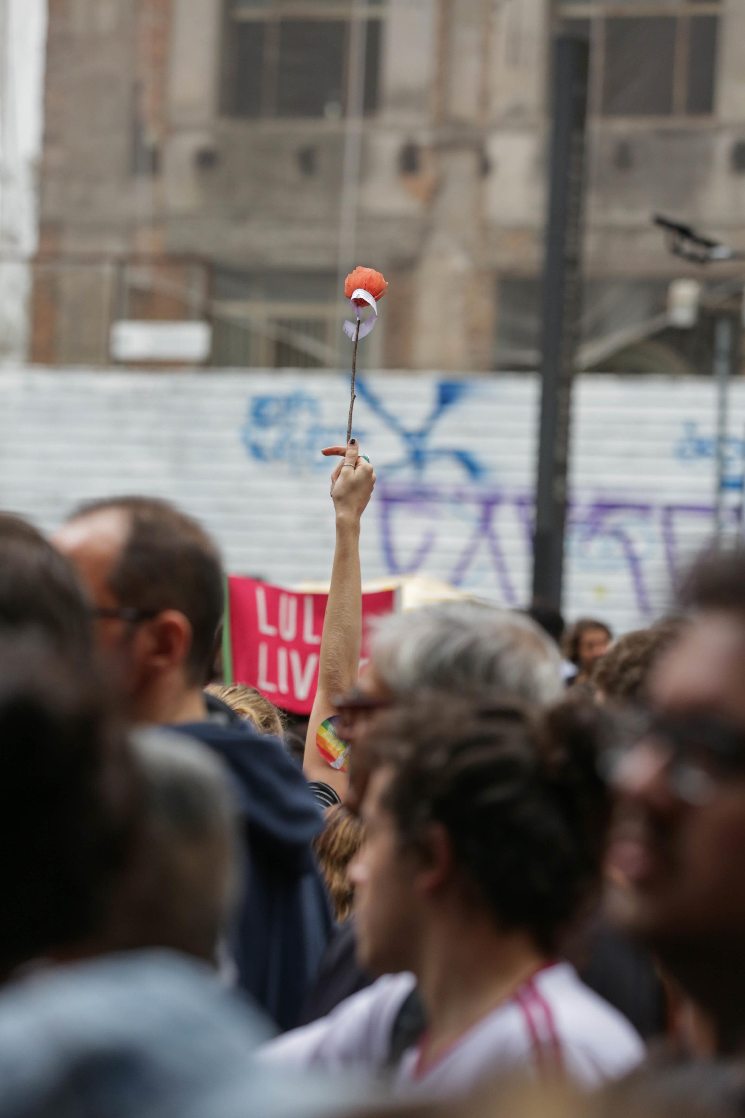 rose protest.jpg