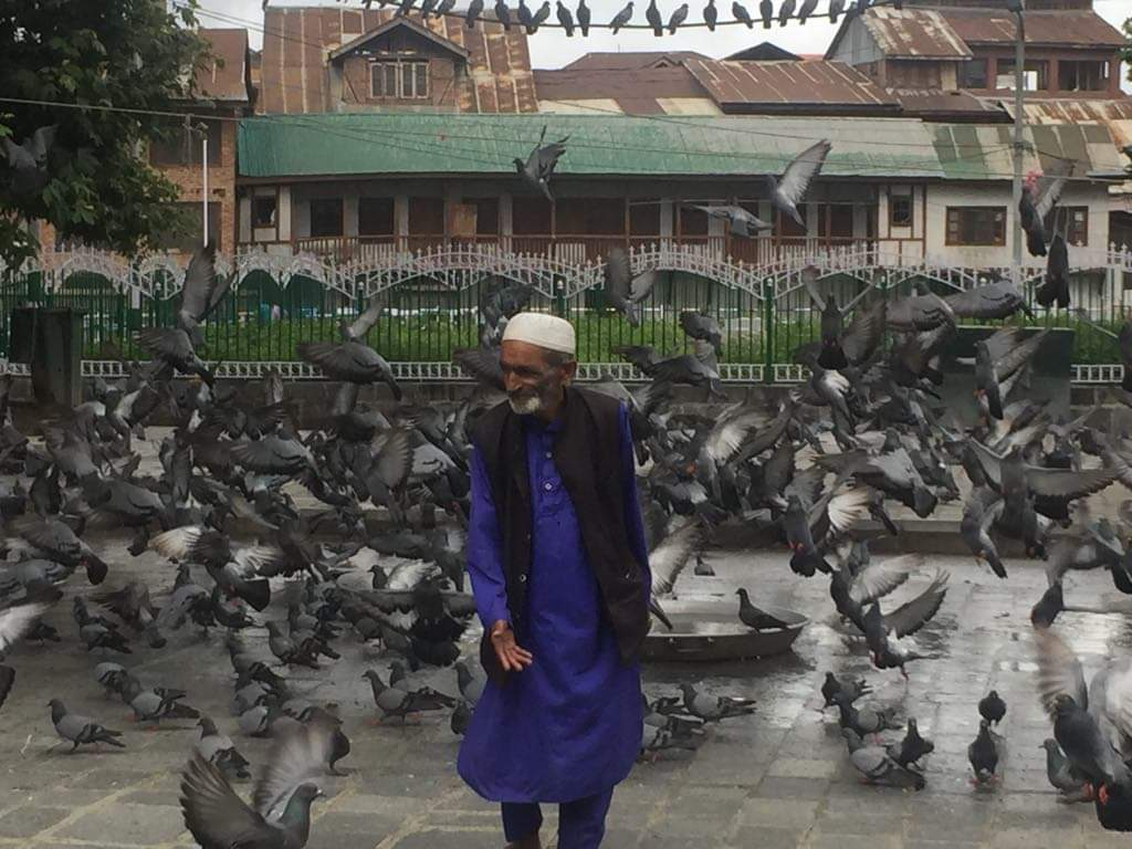 A man surrounded by pigeons in Srinagar, Kashmir. Photo by Taha Zahoor.