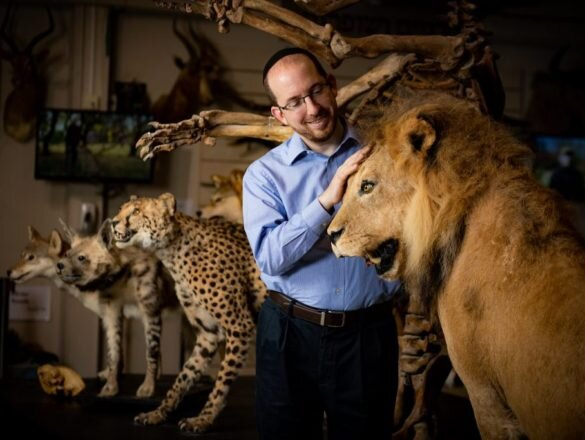 Slifkin poses with a lion taxidermy.