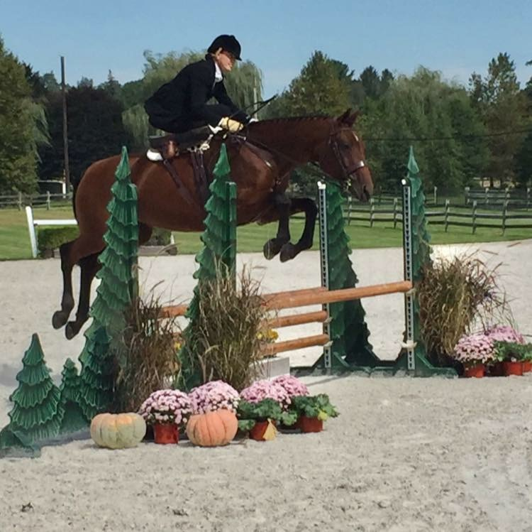 "Rider : Amy Jo Magee   Hometown : Coatesville, PA   Horse : ""Little Lady"" (Lady) – 11 yr old, reg. Hanoverian mare (Landoenig x Lemon Park). I bred Lady, and I still have her dam on my farm.   Amy's Background : I have competed in the 1.25m jumpers, evented through training level, and was the 2017 USEF National Ladies Side Saddle Reserve Champion (also on Lady). I am a registered nurse whose specialty is emergency medicine (with a focus on pediatrics). I am also a mother to two children, aged 7 and 9, and caretaker of our 13-acre farm, and a school nurse for a large, grades K-12, charter school. I have been riding sidesaddle for over 25 years, and it is my preferred way of riding due to an accident many years ago where I broke my back, pelvis, and left hip.   What is your racing experience, side saddle or otherwise? : I have been sidesaddle racing since the Cheshire point to point in 2016.   Do you fox hunt? Do you hunt aside? : Yes, I am a member of Kimberton Hunt (PA), and I also like to cap with other hunts as much as possible. I have only hunted astride once (my first time out), and after that I only hunt aside.   What got you interested in racing aside? : I love to do anything sidesaddle and I love galloping over these beautiful race courses.   What are your side saddle goals for 2018? : My biggest sidesaddle goal this year is to show aside in a National Hunter Derby at one of the USEF shows"
