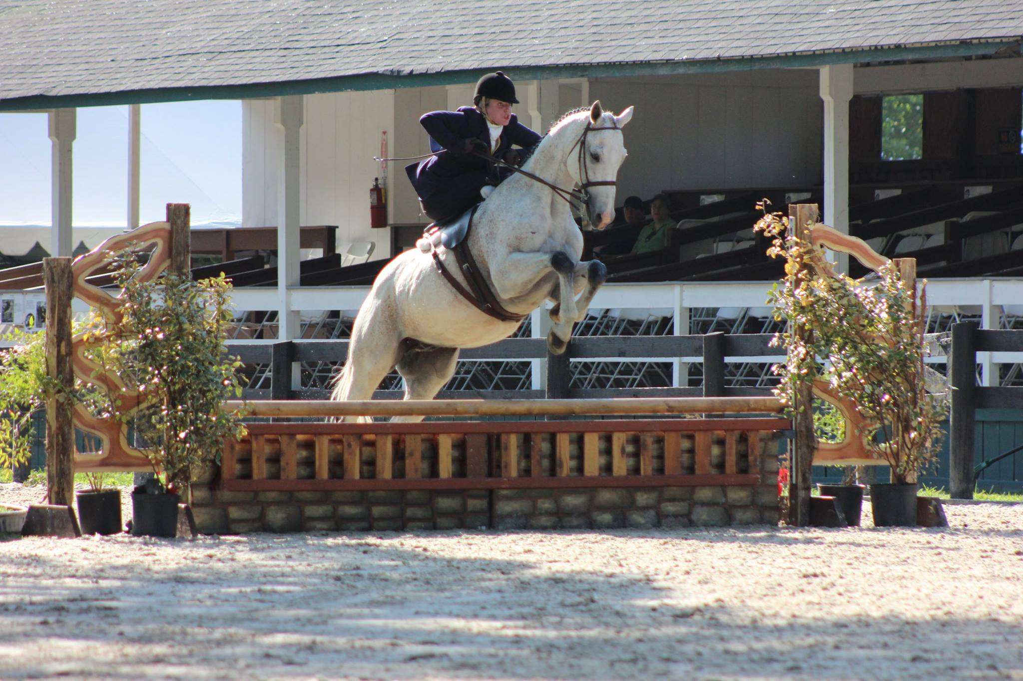 "Rider : Dillyn Ketterman-Millnick   Hometown : Purcellville, VA   Horse : ""Always As You Wish"" (Westley) – 11 yr old, off-track TB gelding, and ""Always Elegant"" (Rhett) – 12 yr old, unraced TB gelding. Both are owned by Ketterman's Jewelers   Dillyn's Background : I have been riding since before I could walk. My 5 sisters and I were very involved in the 4H horse program and grew up doing mostly local and 4H level showing. When I was 15 we needed a demonstration for the county fair and a friend of ours taught me side saddle for the demo and I was in love. My parents bought me the saddle, and I taught myself mostly, but Carol did help me with the occasional lesson and tune ups. I set goals to ride at Upperville and hunt and show in regular hunter shows Side saddle. I was the first and only rider to show side saddle in regular hunter classes at the Virginia 4-H state horse show, showing in Hunter over fences sat 2'6"". They have since made a rule against it because people thought it was unfair somehow. I am currently the Pastry Chef at Clyde's Willow Creek Farm in Ashburn, VA, I went to Culinary School at the Art Institute of Washington and also have an associated degree in Deaf Studies, American Sign Language, from Northern Virginia Community College. I have been riding side saddle for 12 years.   What is your racing experience, side saddle or otherwise? : I began racing aside in 2016. I had no previous experience racing.   Do you fox hunt? Do you hunt aside ?: I fox hunt side saddle and don't like to go astride anymore. I am a thousand times more confident side saddle than I am riding ""normally.""   What got you interested in racing aside? : My horse Rhett does not like the show ring, he is a completely different horse inside the ring from who he is out hunting. He loves to be in open fields but I still want to compete a little bit. So we started racing, back when the races were first getting started. He had no idea what was happening and came in at the very end. Now that we have been doing this for a few years he is finally starting to get a little competitive.   What are your side saddle goals for 2018? : I have gotten a second horse, Westley and I am really excited for him! He has a fantastic personality and is so sweet and does not mind the show ring. I am hoping to have some fun showing and racing him this year while my friend Hannah helps me out by showing and racing Rhett a little bit for me."