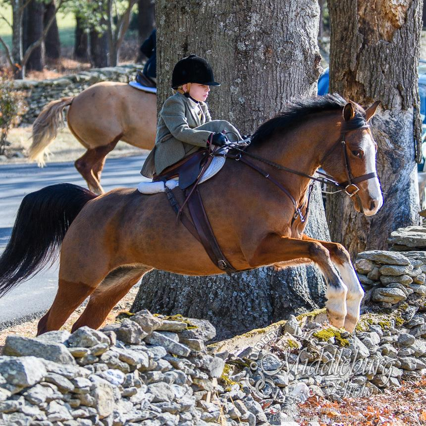 "Rider : Sydney Pemberton   Hometown : Middleburg, VA   Horse : ""Lynden's Sadie Hawkins"" (Sadie) - 12 year old Welsh/TB/Arab and she has an adorable blaze and 4 white socks and she is bay. I don't own her but I wish I did. I lease her from MaryElaine Boland. Sadie likes hanging out with her bestie in the field, Velvet. She used to do a lot of horse shows but we just foxhunt her now. But we like to go to the Upperville horse show. She loves twizzlers. I don't think Sadie likes to get dirty outside because she is usually clean.   Sydney's Background : I am 9 years old and in the 3rd grade so I'd don't have a job yet. I have been riding side saddle since I was 2 yrs old with Ms Devon and I really like it. My first side saddle pony was Jazz and we did [leadline at] Upperville and won. I have done a few horse shows. But I really just like foxhunting because I like to go fast and hang out with a bunch of people. And I like all the trails. I did the hunter paces and that was pretty fun. I'd like to do more of those.   Do you fox hunt? Do you hunt aside? : Yes, I fox hunt aside.   What got you interested in racing/foxhunting/hunter-pacing aside? : I just always did it. My Dad says it was easier to pony me around when I was little with the side saddle.   What are your side saddle goals for 2018? : This year I would like to jump bigger jumps and maybe try to go first field at the end of the year."