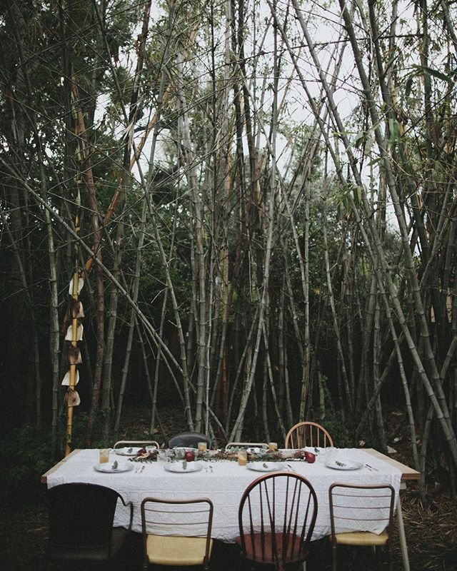 Any excuse to craft a table under some greens... how will you be spending your holiday this year ? 🍽🌲🍂🍁🦃