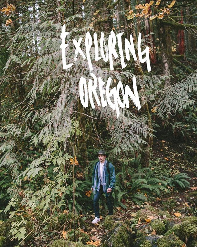 Kent and my adventures in Oregon are up on the blog ...one of my favorite photo journals I've been able to put together for a while now. There was so much moss and the yellow and gold tones in the trees were pure magic.