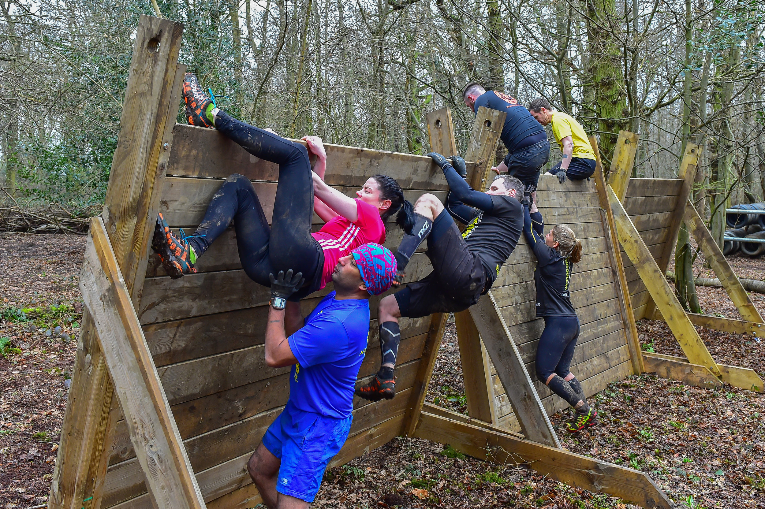 wild forest gym brentwood days out in essex things to do in essex fitness outdoors