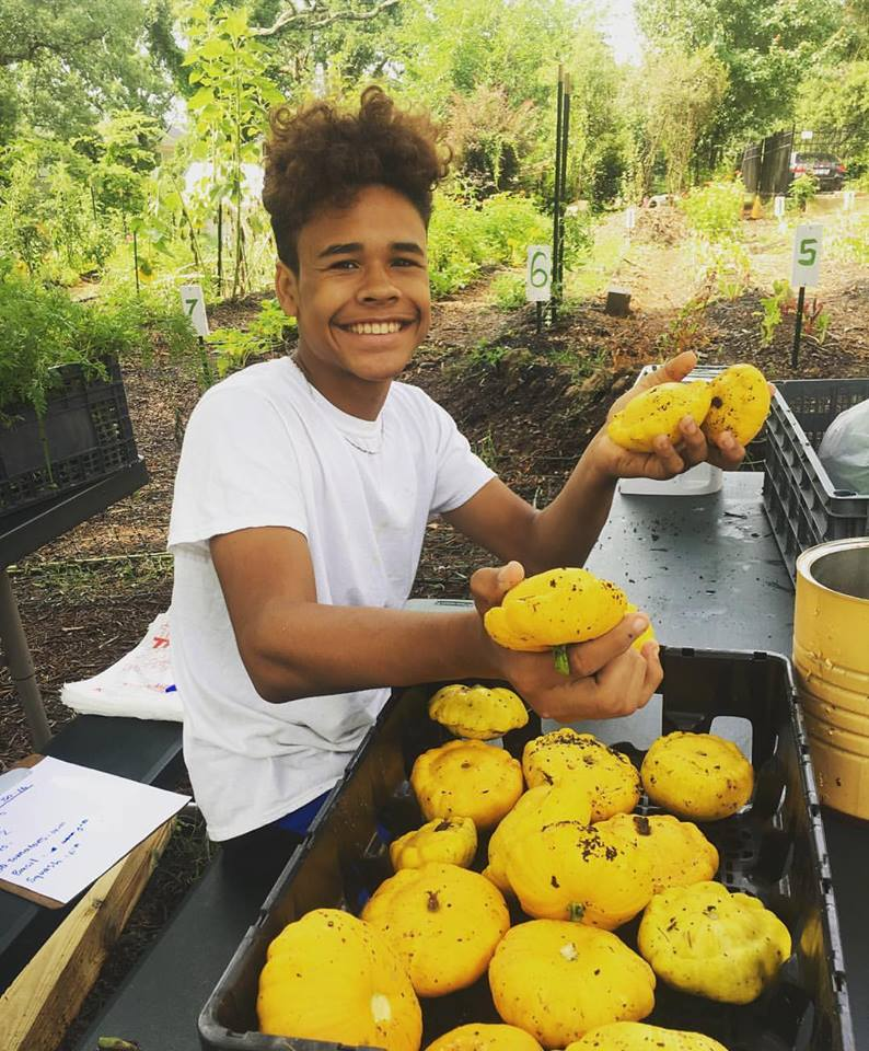 Trey, our awesome garden assistant at the Geer Street Learning Garden, harvesting Patty Pan Squash yesterday for the Sunrise Recovery fo.jpg