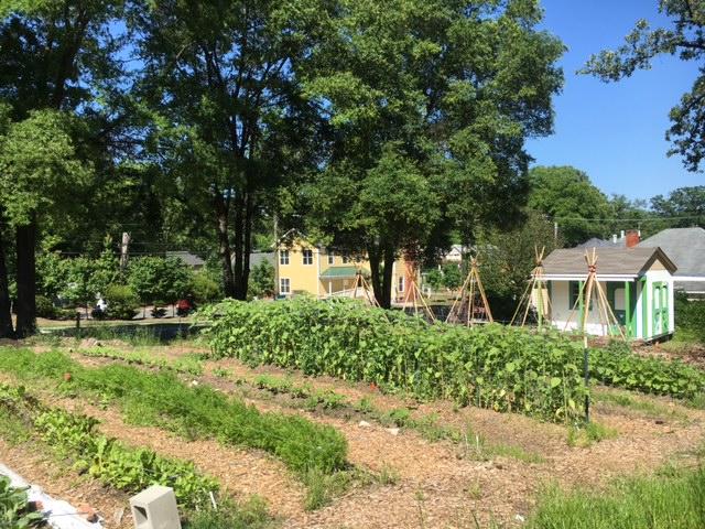 Geer Street Learning Garden.JPG