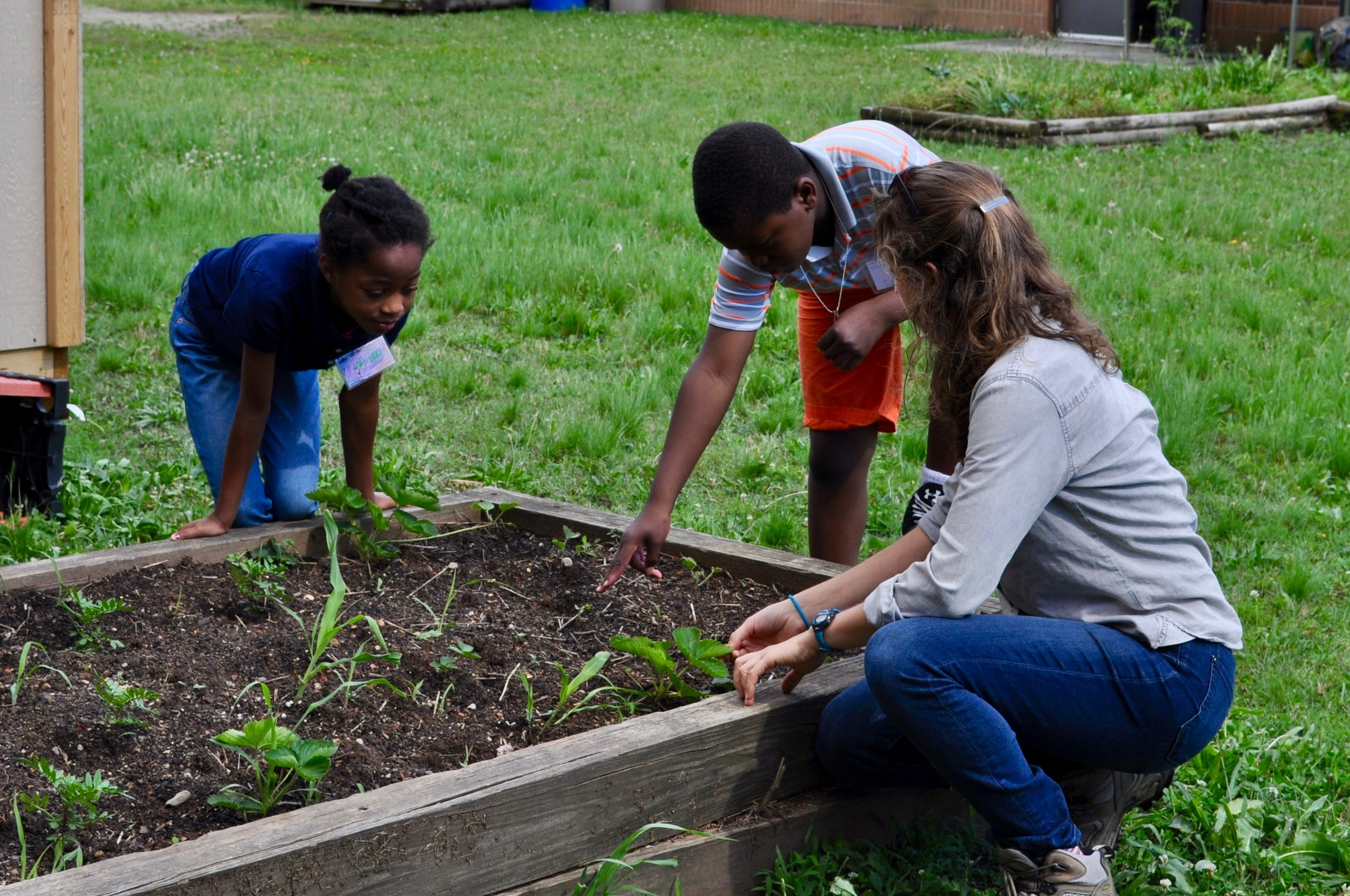 IFFS Staff Sabina Bastias teaches students in the Eastway Elementary garden
