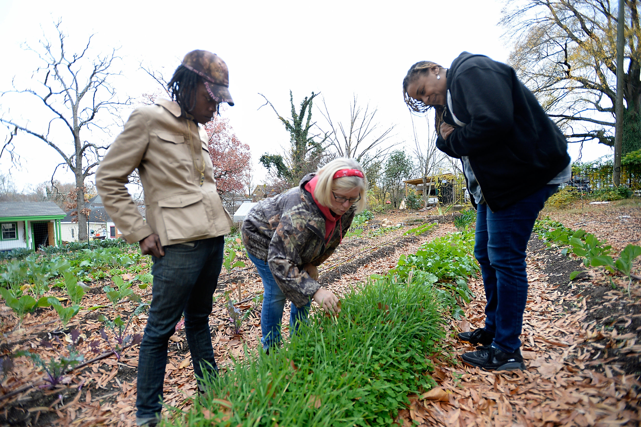 Kay teaching two volunteers from Sunrise Recovery Center about gardening