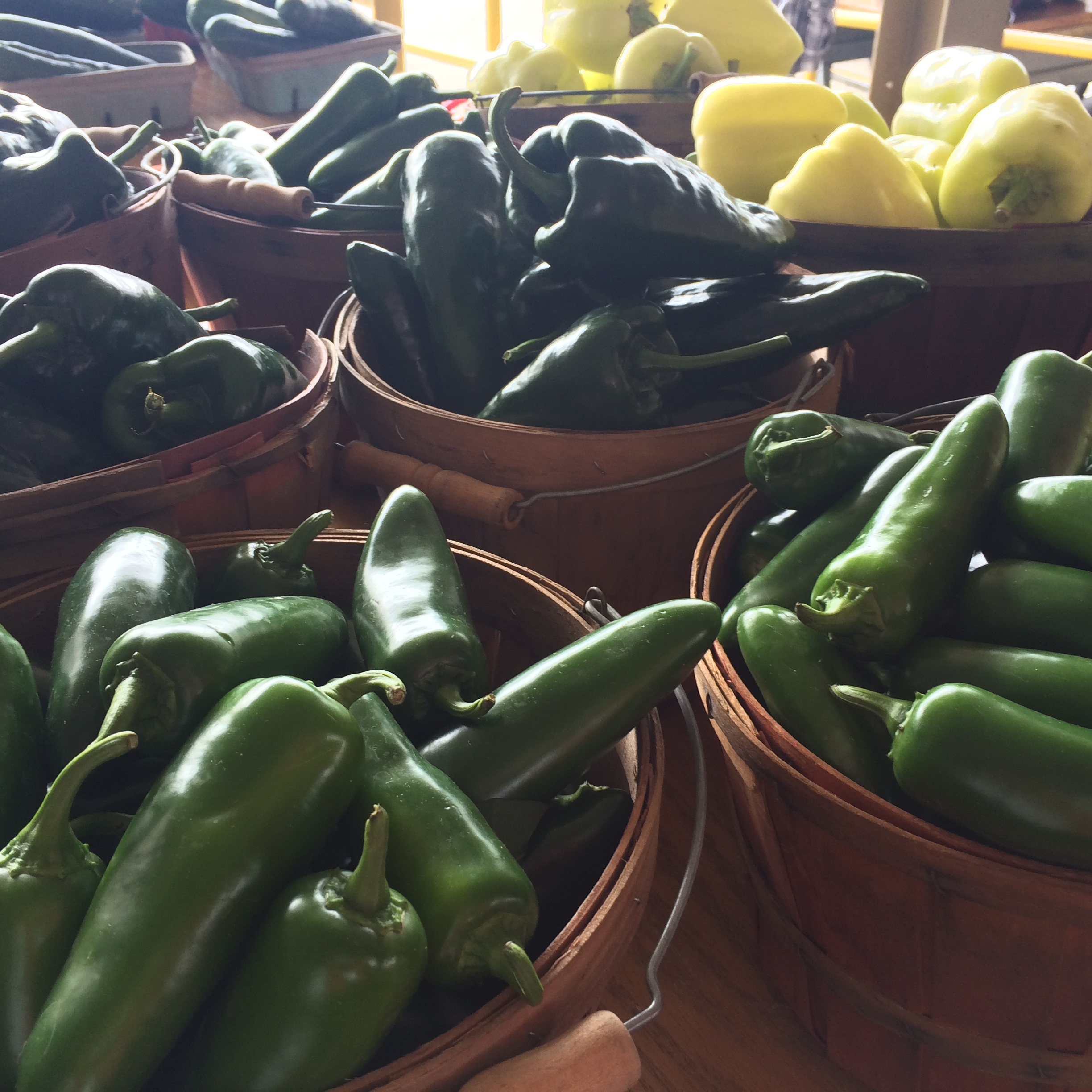 Crisp jalapenos and poblanos at the market