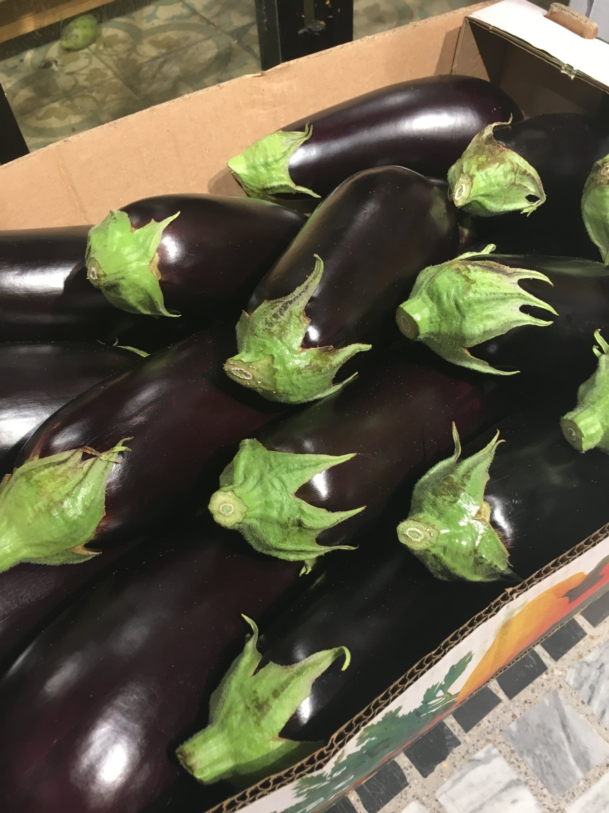 This is what I call fresh! Eggplants at the market in my hometown, Givat Olga