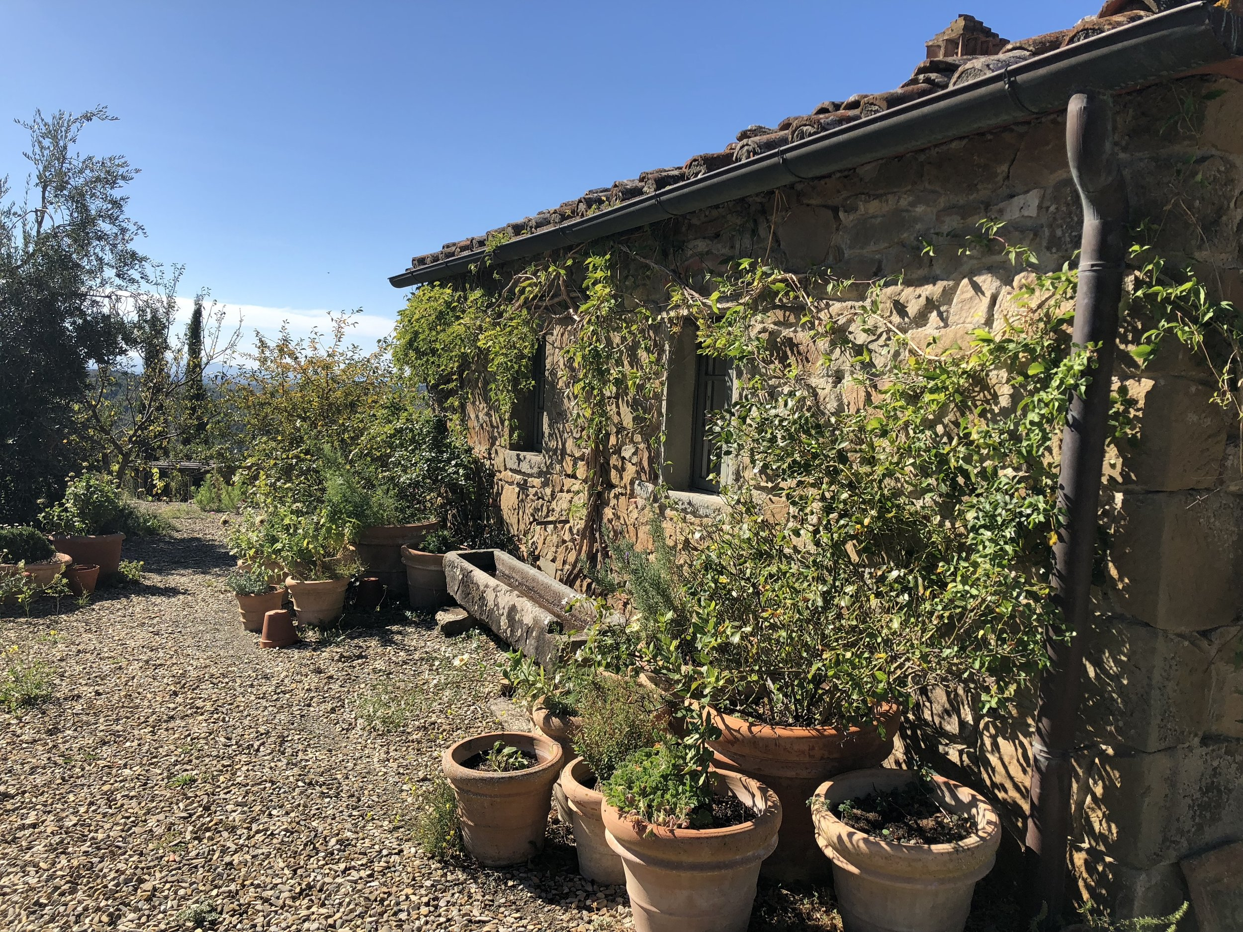 Living the TUscan farm life