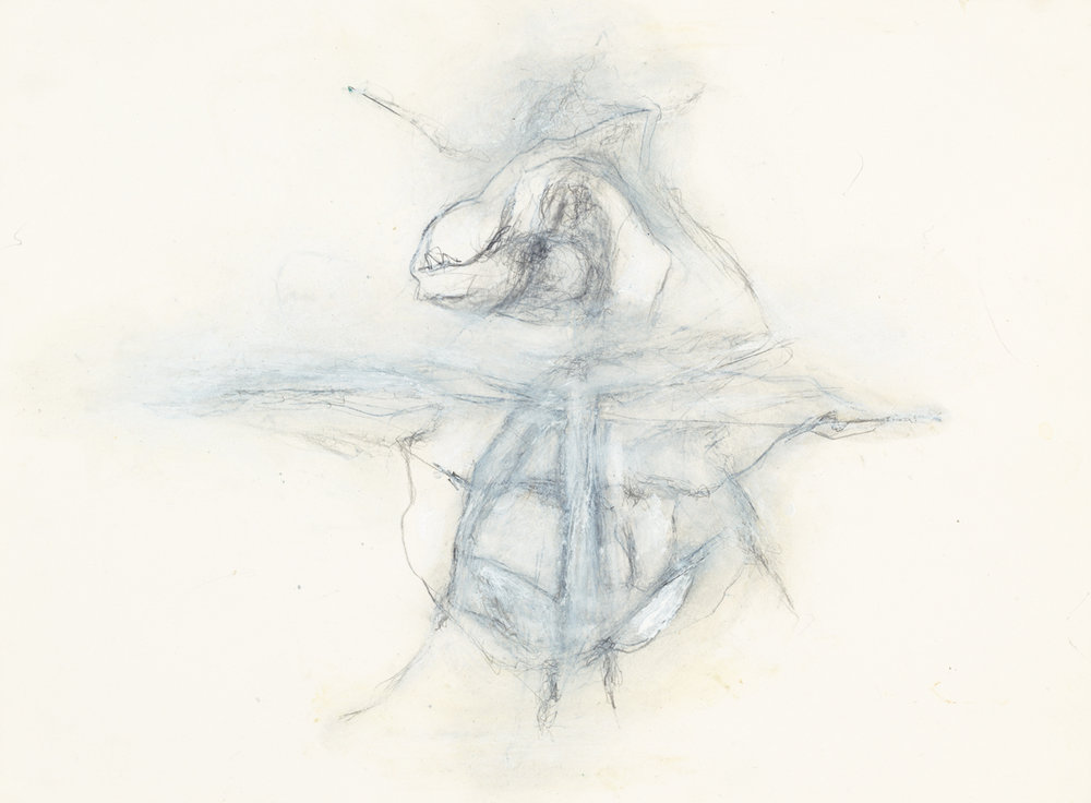 Hedda Sterne,  Insect, August 23, 1999 , Graphite and oil pastel on paper, 9 3/8 in. x 12 1/4 in.; Collection of The American Macular Degeneration Foundation, gift of Claire Nivola