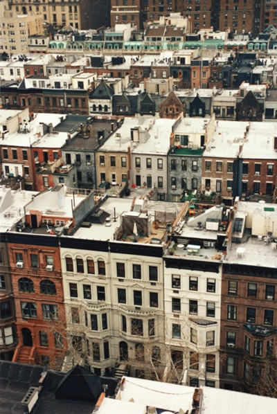 Archetypal Brooklyn rooftops