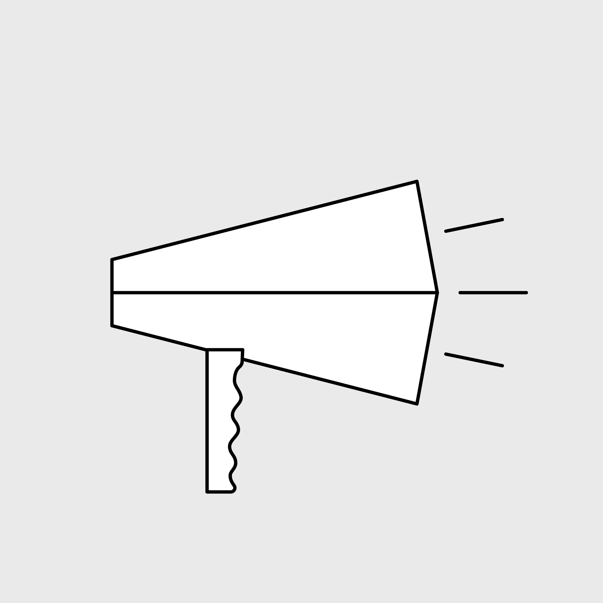 small megaphone icon square@3000x-100.jpg