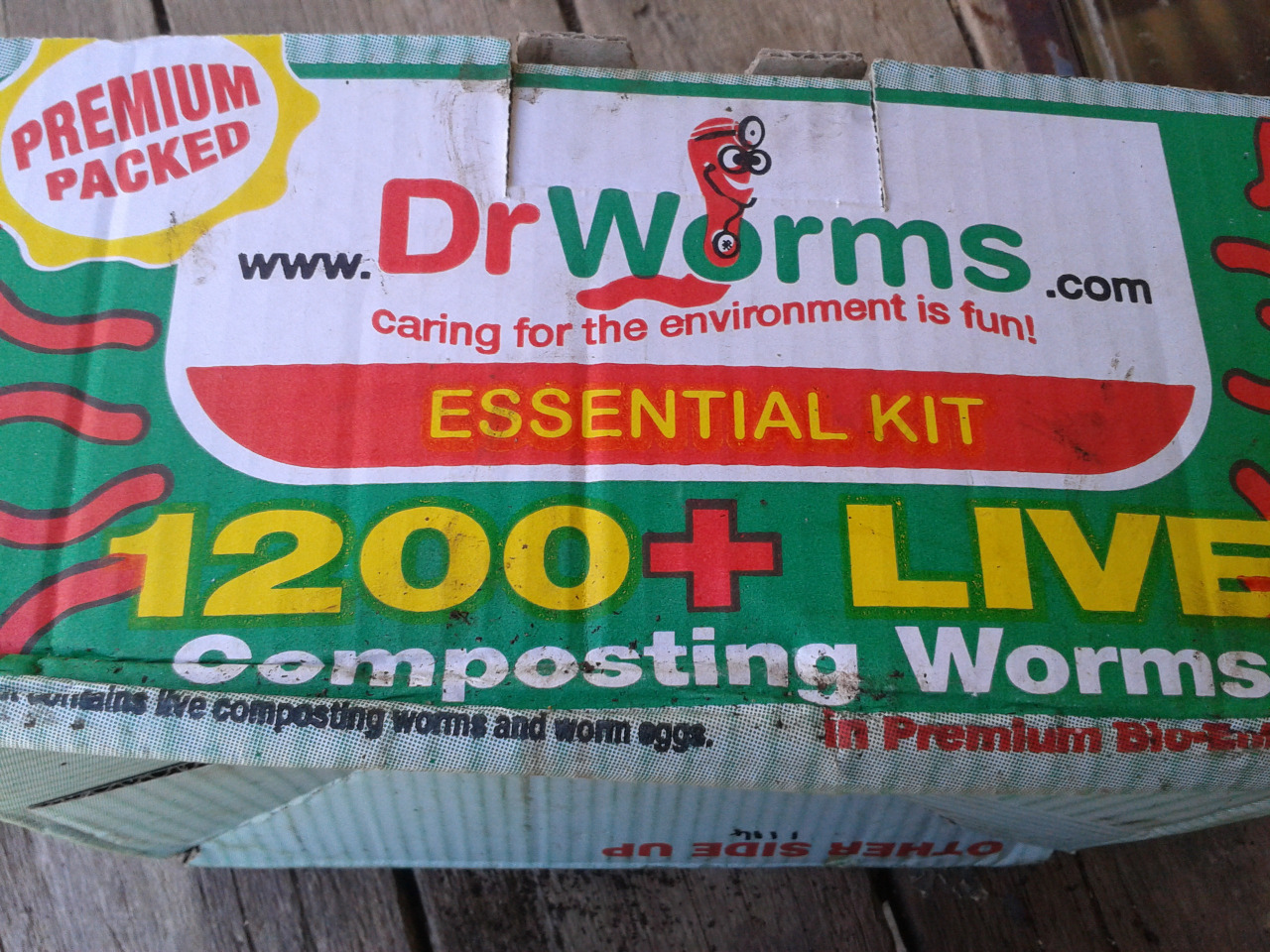 Dr. Worm worms.jpg