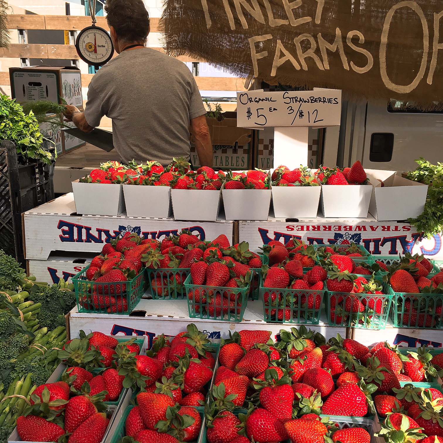 Finley Farms. Just one of the many strawberry vendors at the Santa Monica Farmers Market.
