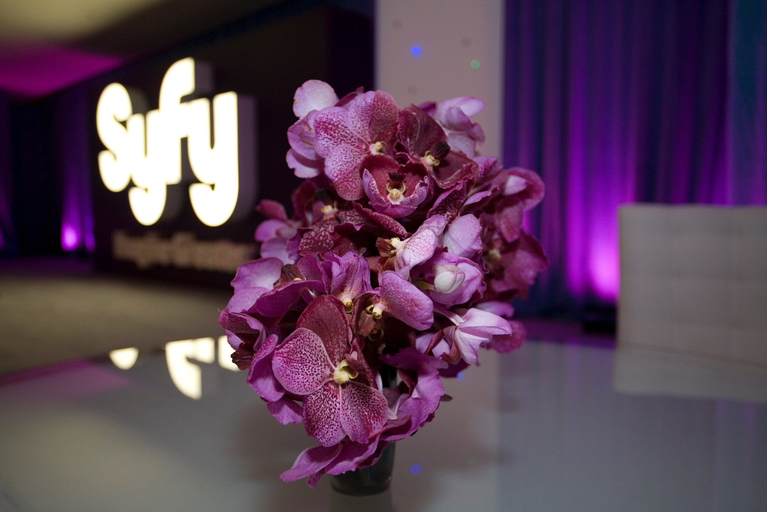 Syfy Upfront at NY Times Building