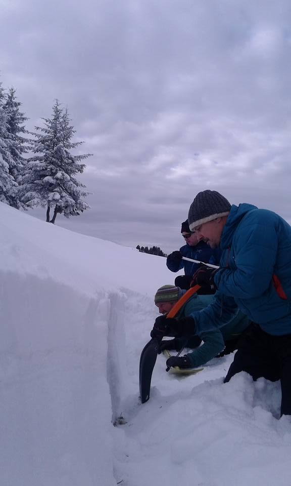 Snowpack analysis
