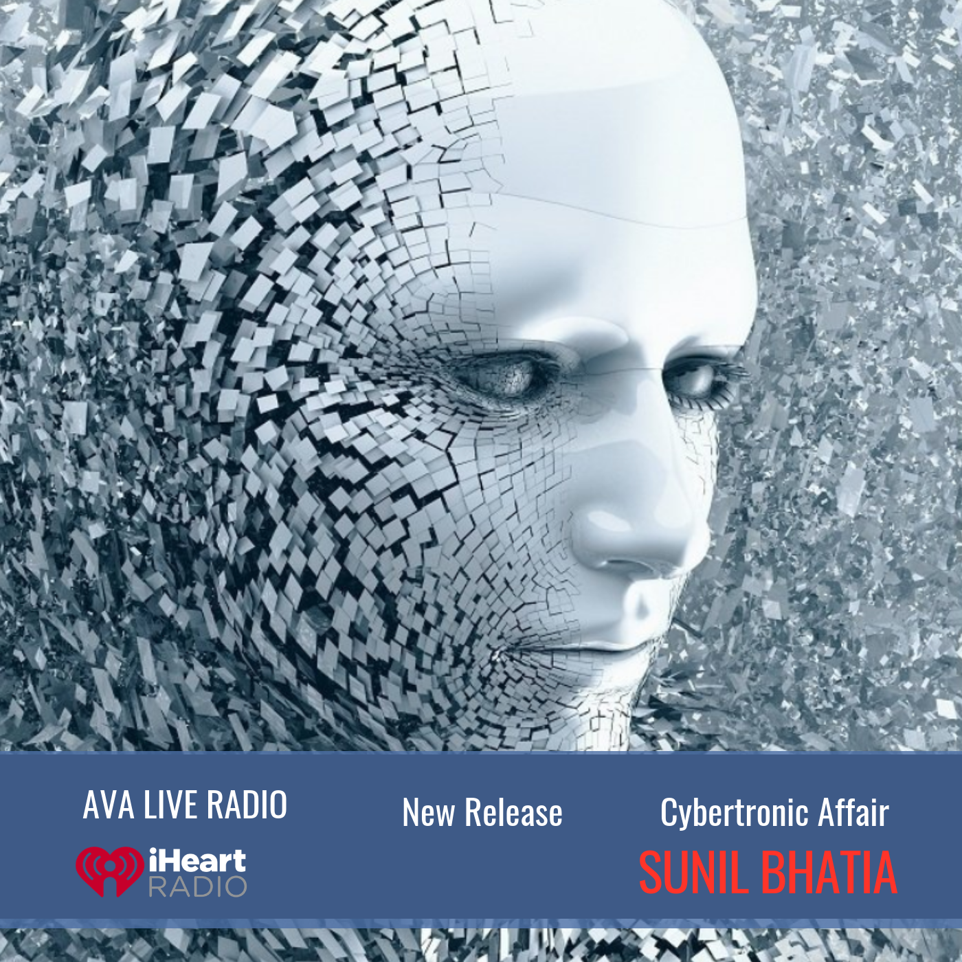 Cybertronic Affair ava sunil bhatia.png
