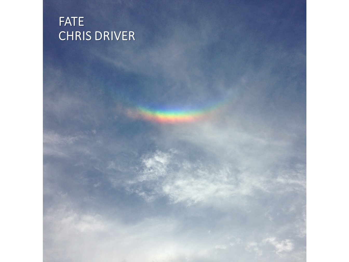 Chris Driver Fate Artwork.jpg