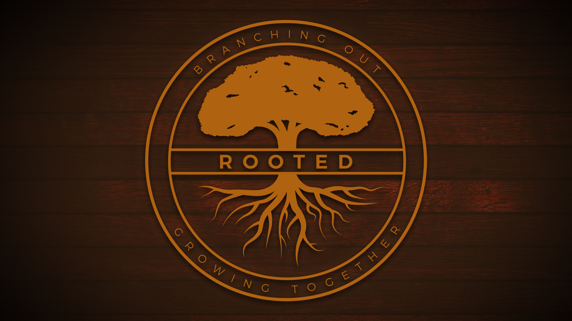 rooted4.jpg