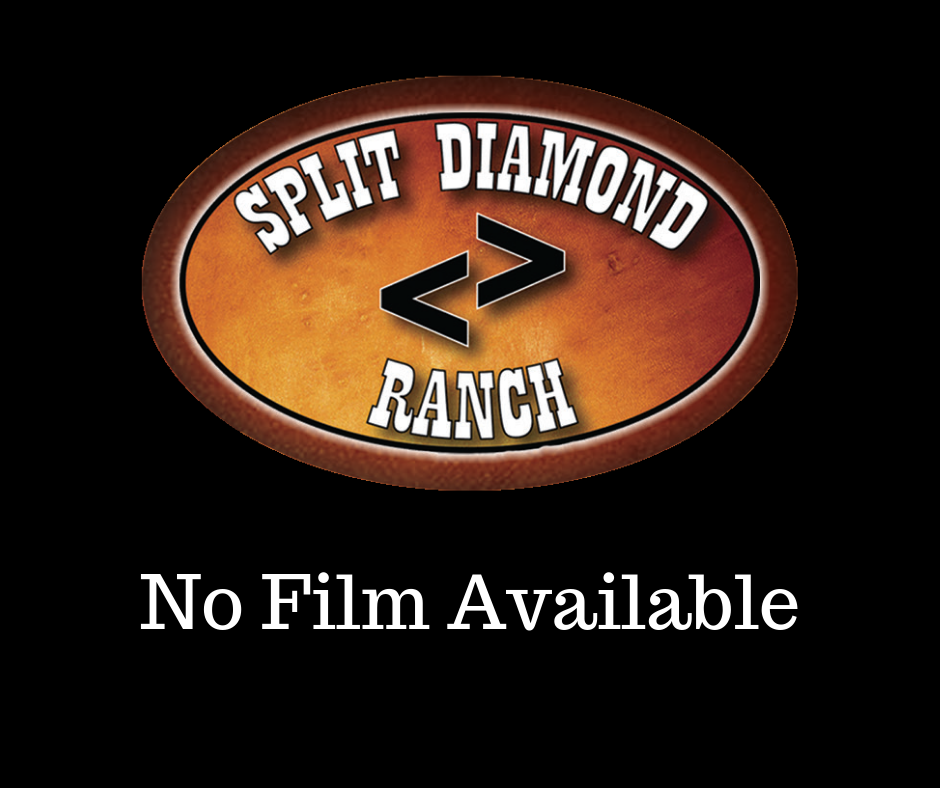 No Film Available!.png
