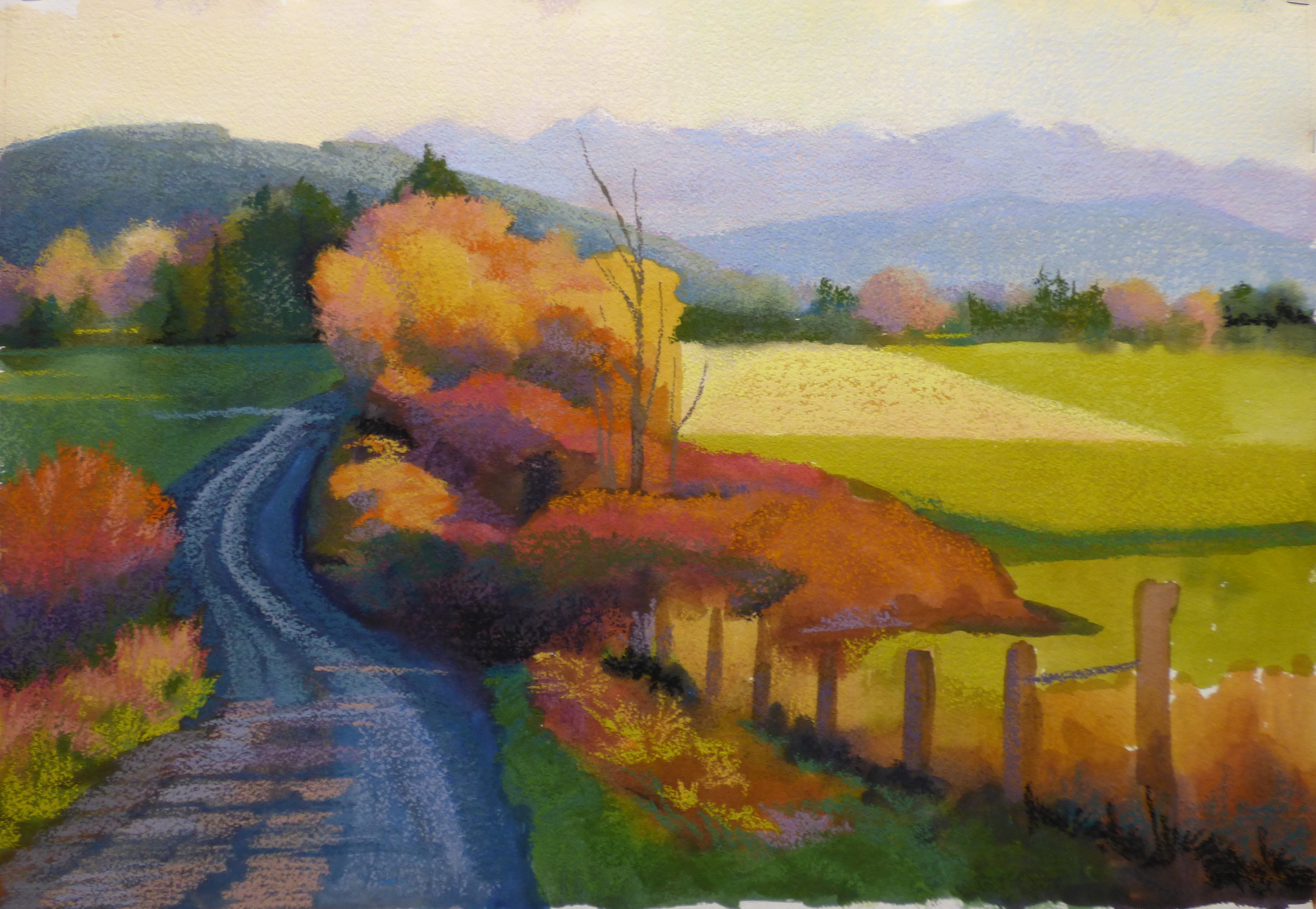 I began stroking mid and light value pastels over the watercolor. My goal was to make each area rich in colors.