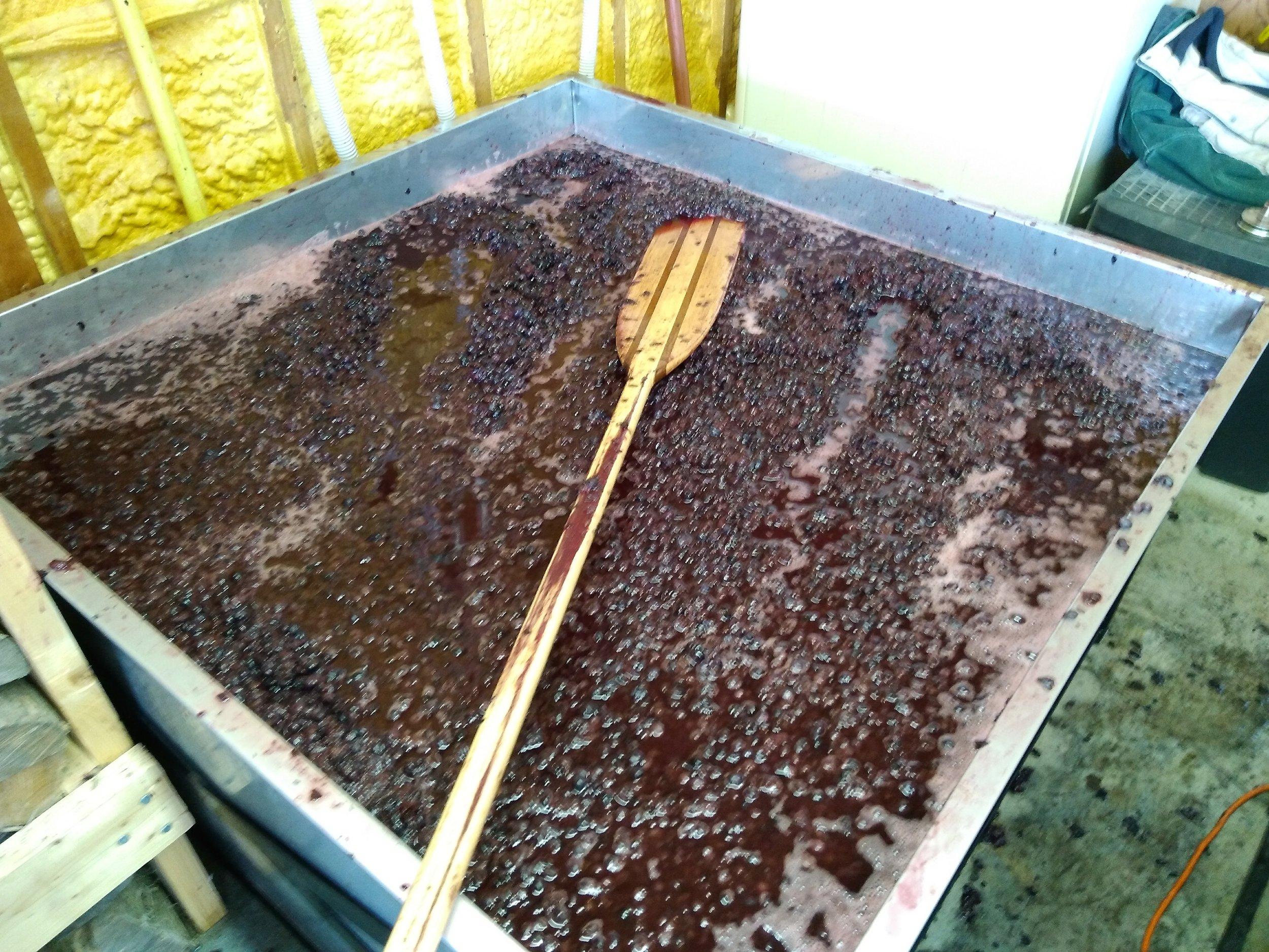 Crushed blueberries in tank2.jpg