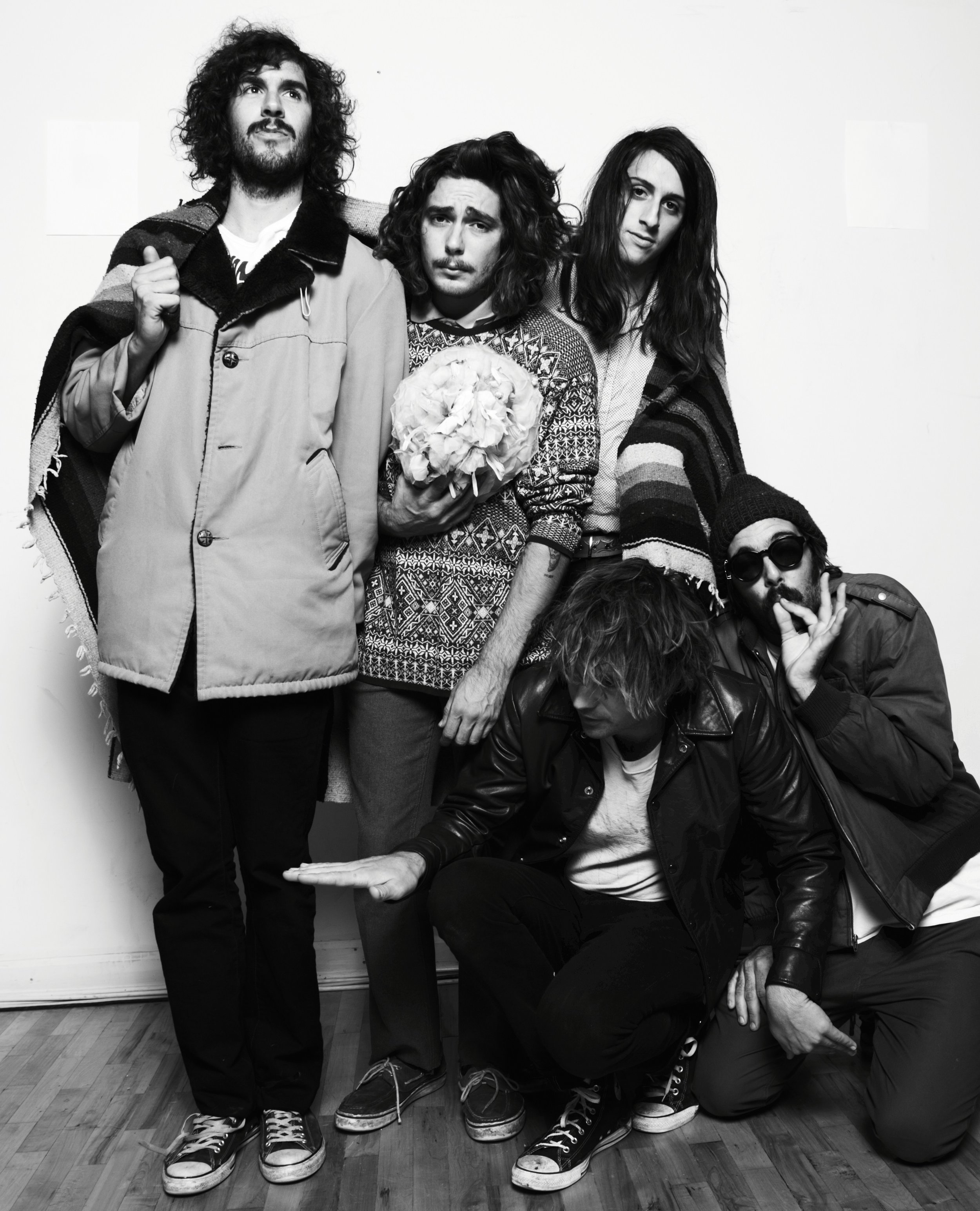 The Growlers 2017 Tour