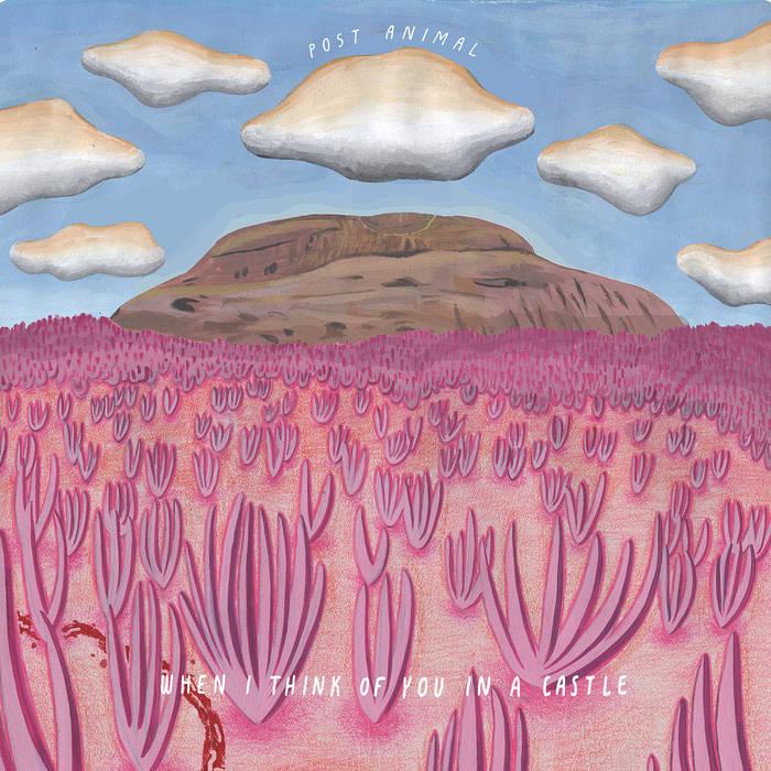 Post Animal: Album Review