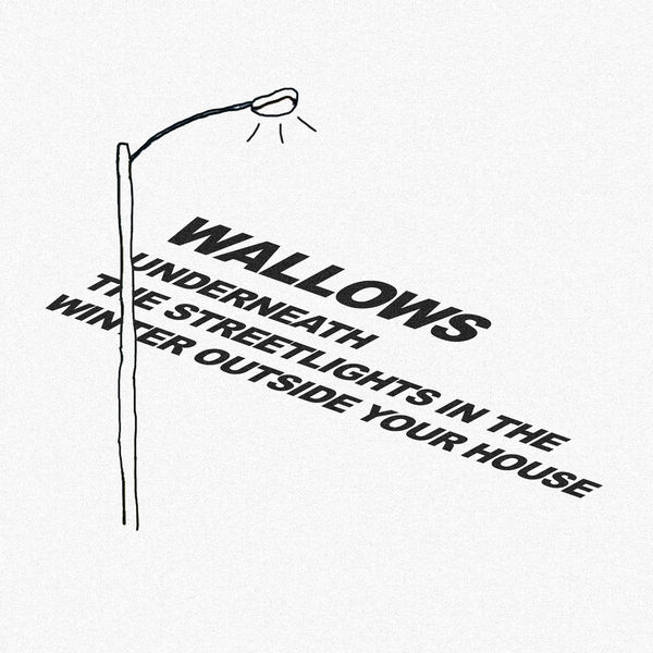 Wallows: Underneath The Streetlights In The Winter Outside Your House