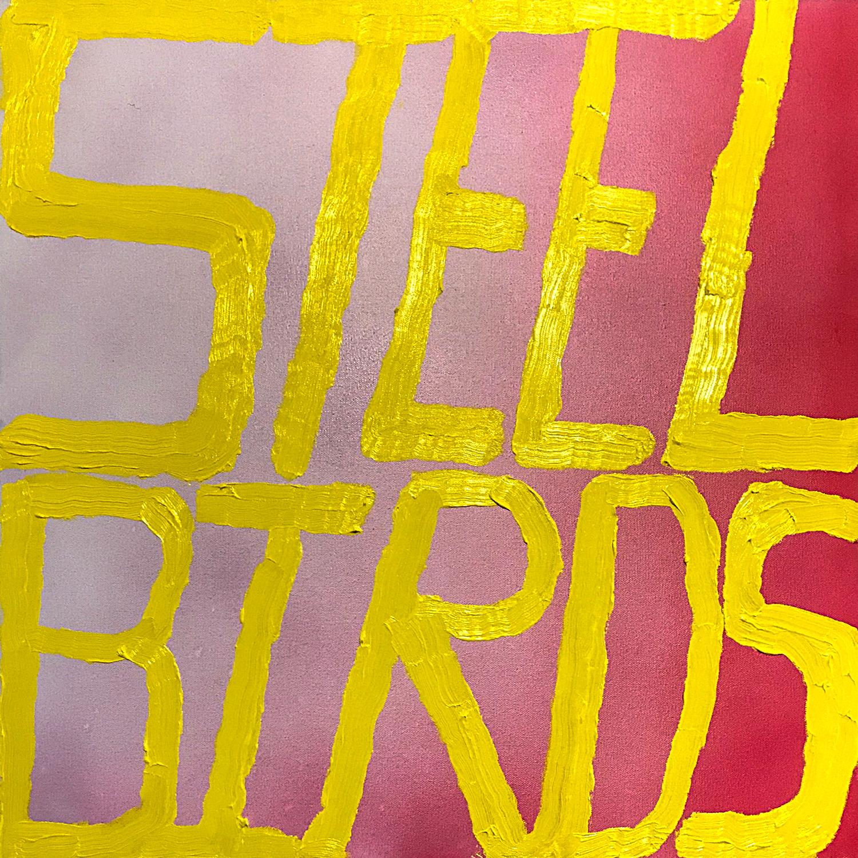 """Slow Pulp: """"Steel Birds"""""""
