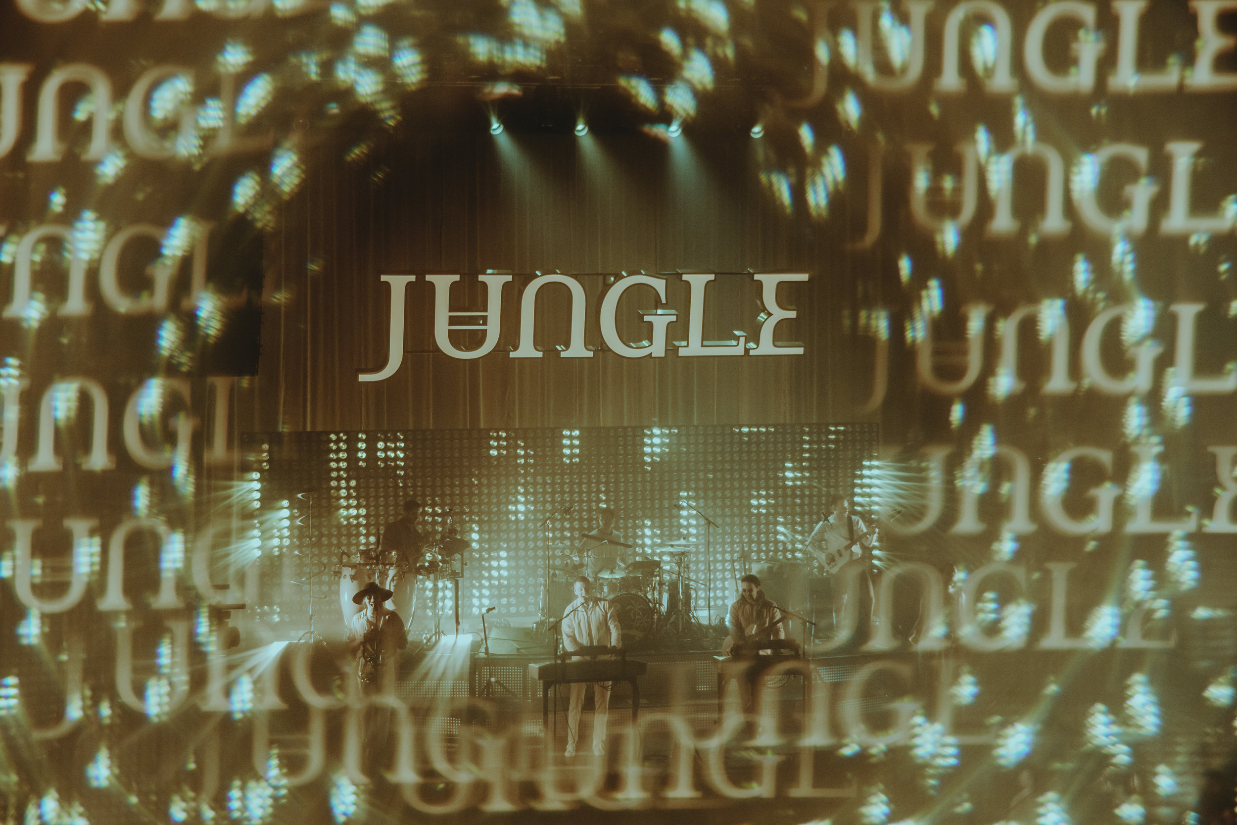 Jungle (by Nicole Conflenti)
