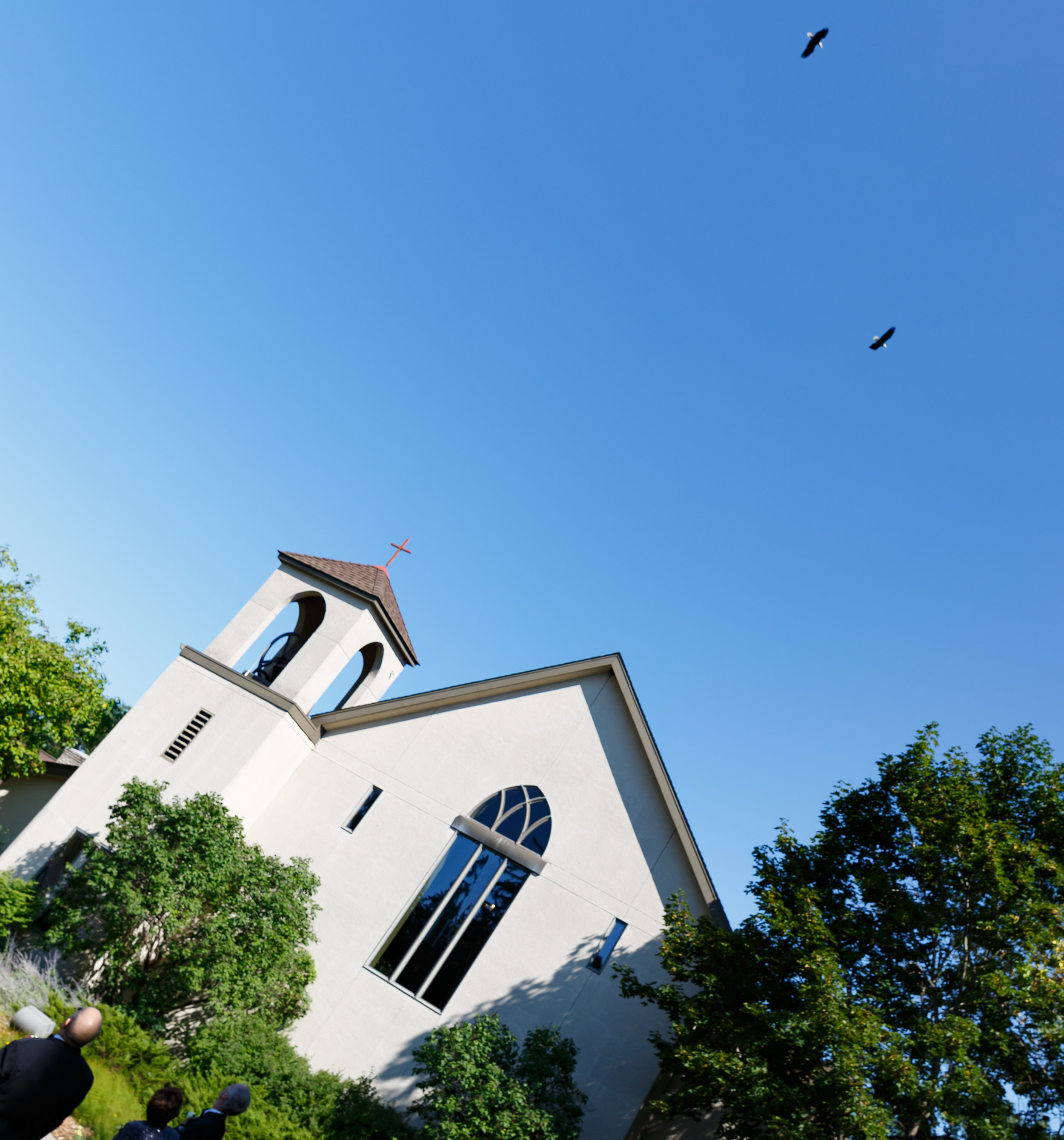 Was this PLANNED? Two bald eagles, flying over the church on an Air Force Wedding Day!