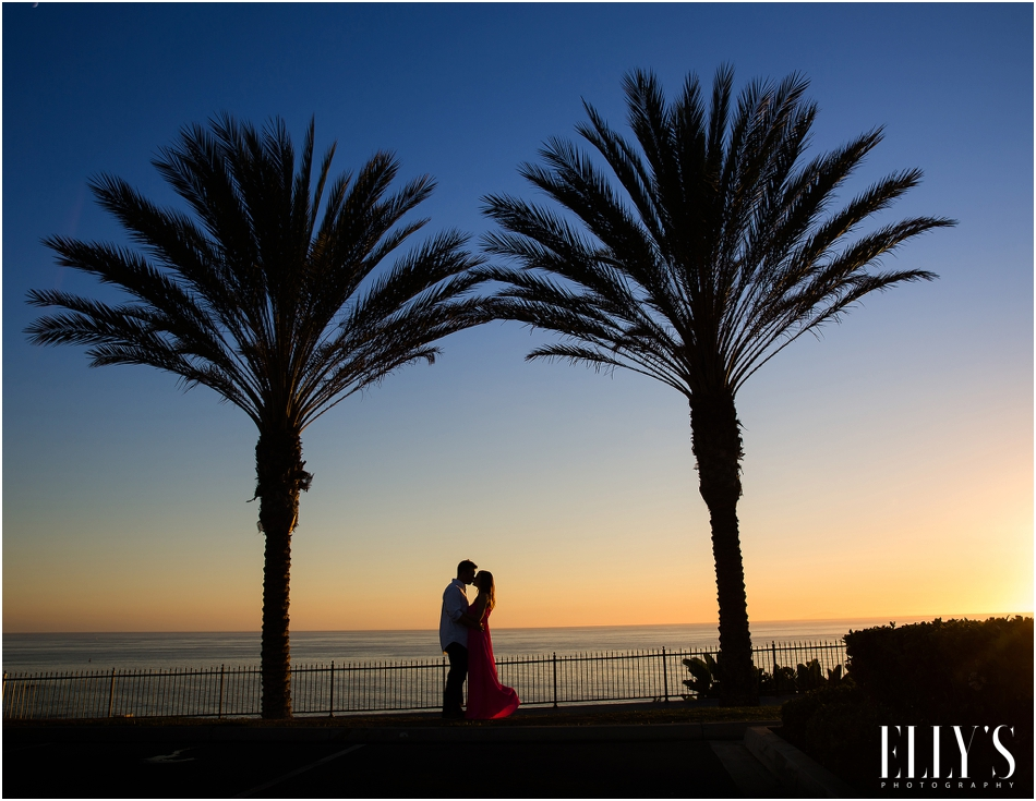 014Los Angeles Engagement