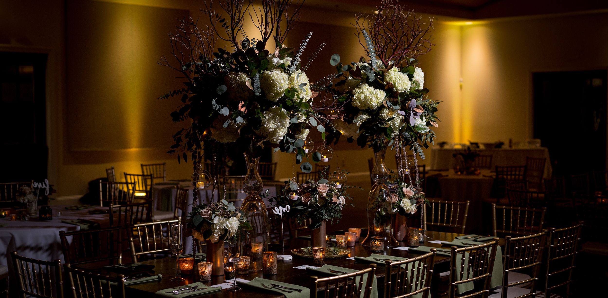 Click here to view the best wedding planners in Charlotte and Asheville