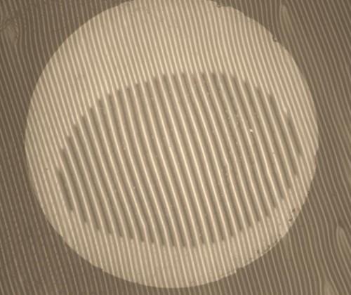 Wrinkle Adh 4.jpg