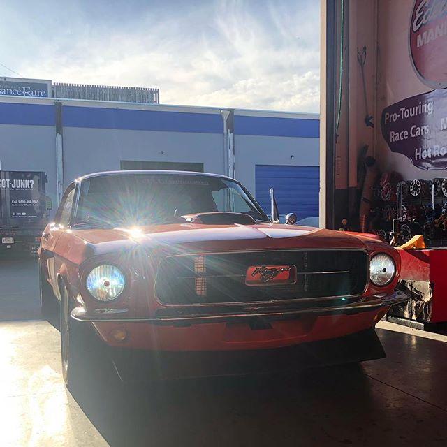 Classic Mustang - NeoPhyte Series - Headlights