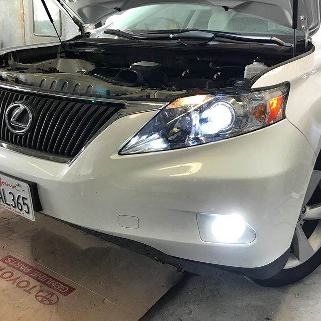 Lexus W/ Pro Series+ On Both Head & Fog Lights