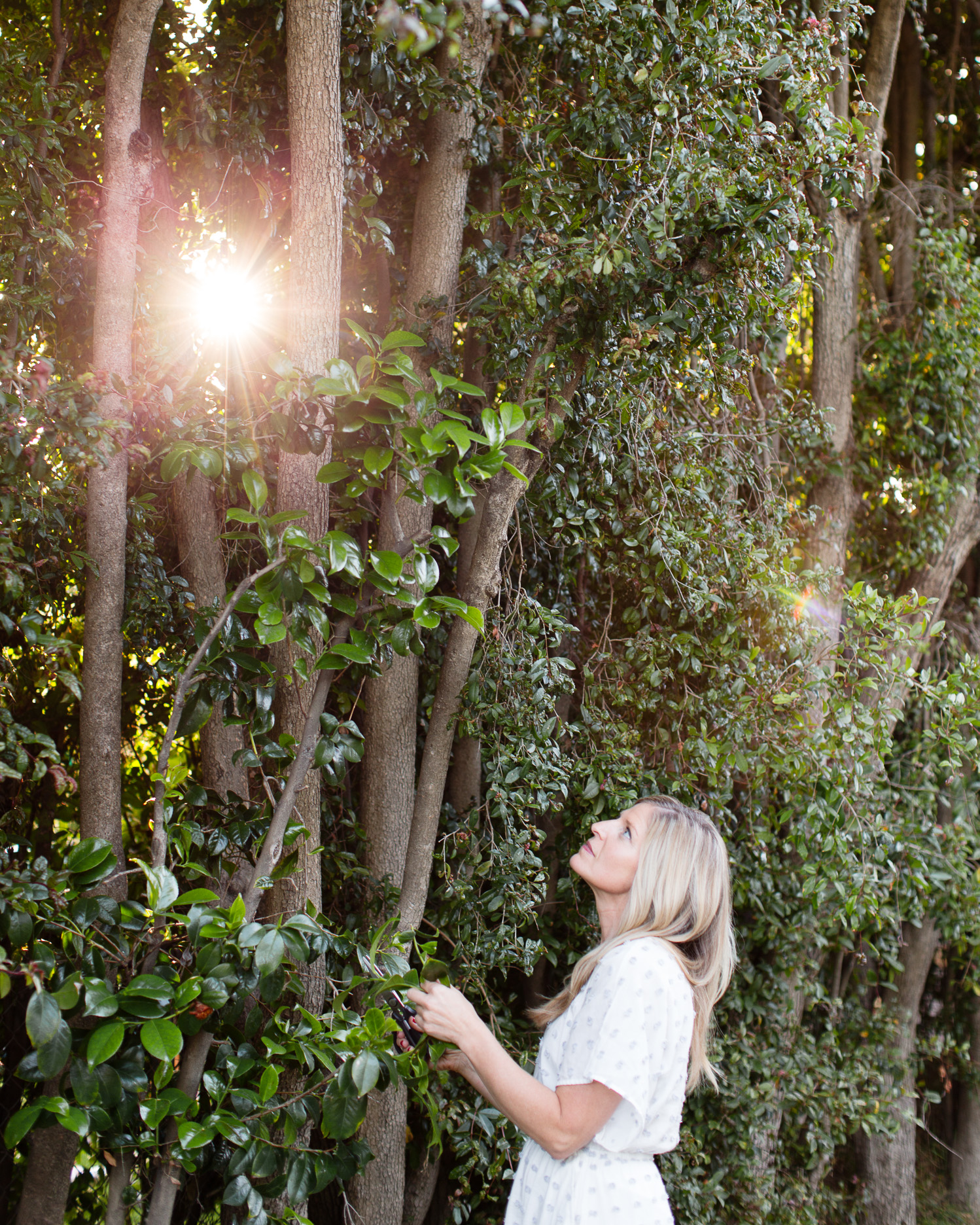hylah-hedgepeth-photography-D73A9878-Edit.jpg