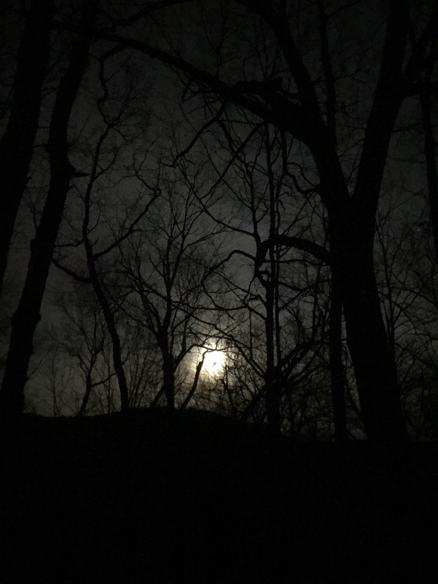 January_31_2018_ full_moon_hudson_valley.JPEG