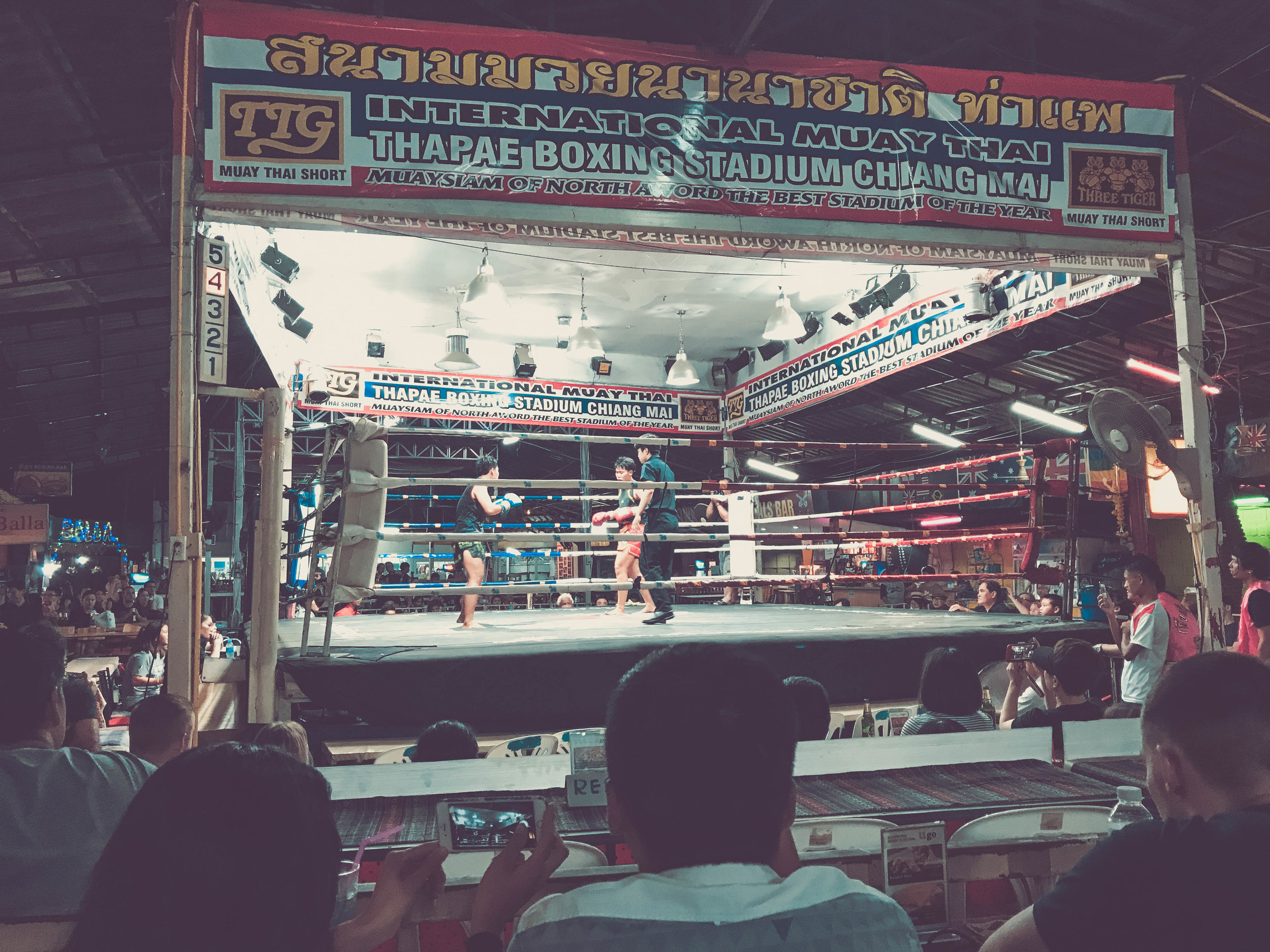 Muay THai boxing.jpg