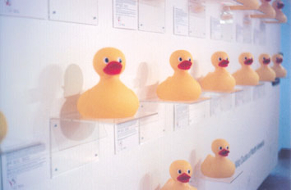 wild ducks of na - tectonic3.jpg
