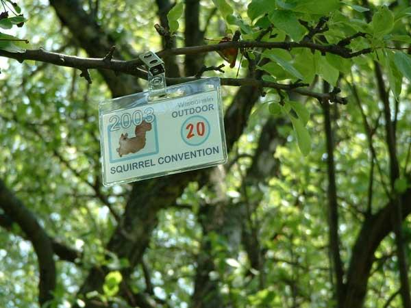 wisconsin squirrel convention5.jpg